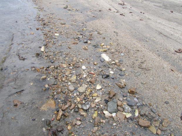 Ballast flint on the shore of Little Norway. Photo: Mats Burström.